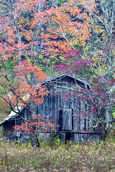 Autumn Barn on Hwy 64 on the way to Highlands, North Carolina.   By Rob Travis, via Flickr