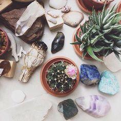 Elements for Daily Devotion :: crystals :: sage :: succulents :: plants :: cactus :: inspiration @aumandamen