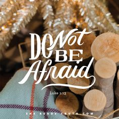 """Day 23 of the """"Christ Was Born For This"""" Advent 2016 reading plan from She Reads Truth ~ The Birth of John the Baptist Foretold ~ Today's Text: Luke 1:5-25 [...]"""