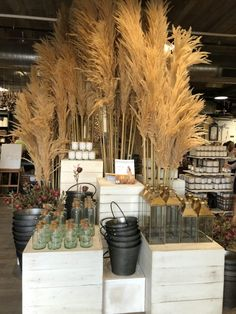 Love the Pampus grass and grouping of like items together.Inspiring Fall Displays inside Magnolia Market at The Silos in Waco, Texas Fall Store Displays, Gift Shop Displays, Store Window Displays, Autumn Window Display Retail, Booth Displays, Retail Displays, Jewelry Displays, Market Displays, Fall Home Decor