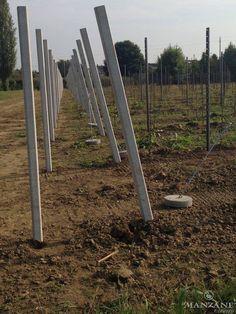 Pali in cemento delle testate piantati