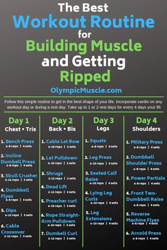Supplements to Get Ripped in 4 Weeks Check out this great 4 day workout routine for building muscle and getting ripped!Check out this great 4 day workout routine for building muscle and getting ripped! 4 Day Workout Routine, Gym Workout Tips, Workout Days, Weight Training Workouts, Fun Workouts, Gym Workout Plans, Best Workouts For Men, Weekly Workout Routines, Gym Plans