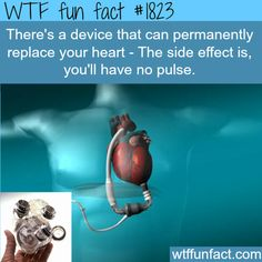 "Device that replace heart - WTF fun facts. Shared this with my honey. First thing he said was, ""So you're a vampire? That'd be cool."""