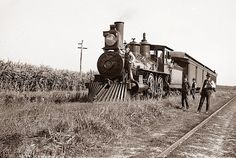 Sugar Cane fields outside of New Orleans. The picture was taken around 1890.