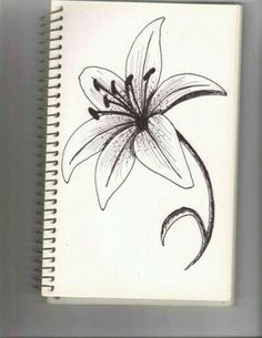 lily flower by traditional - Top 99 Pencil Drawings 3d Drawings, Amazing Drawings, Drawing Sketches, Pencil Drawings, Drawing Ideas, Sketching, Tattoo Sketches, Plant Drawing, Painting & Drawing