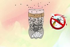 How to Make a Plastic Bottle Mosquito Trap. You can easily reduce the number of mosquitoes on your property with a plastic bottle trap that will attract and kill the mosquitos. The liquid in each trap will last about two weeks, and then,. Mosquitos, Organic Soil, Organic Gardening, Mosquito Trap, Pest Solutions, Backyard Paradise, Garden Guide, Organic Matter, In Case Of Emergency