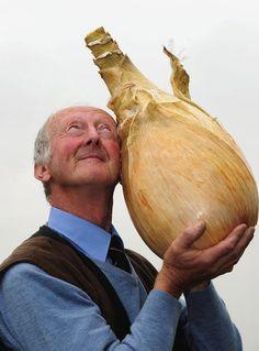 world's largest onion.or world's smallest onion farmer? Veggie Art, Record Holder, Ear Hair, World's Biggest, World Records, Small World, Worlds Largest, Onion, Guinness