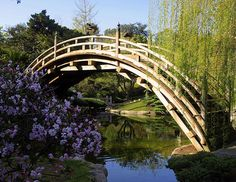 Wooden Bridge The flowering bush, reflections and wooden bridge combined to make this a nice image. Seen in the Japanese Garden in the Huntington Library and Botanical Gardens, San Marino, CA