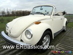 triple white vw beetle convertible - my fave Vw Cabrio, Vw Beetle Convertible, Engin, T Shirt Transfers, Vw Beetles, Dream Cars, Bugs, Volkswagen, Classic Cars