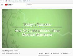 Endokannabinoid rendszer: ebben az orvosi cikkben megtudhatod, mi az az endokannabinoid rendszer,  és hogyan hat a CBD!  A cikk címe: 7 kérdés- 7 válasz a CBD-ről. Orvosok írták, szuperjó kis összefoglaló!  #cbd #cbdwebshop #cbdwebaruhaz #cbdolaj #kenderolaj #cannabis #cannabisolaj #orvosikannabisz #cbdesrak #endokannabinoidrendszer Today Episode, Medical Marijuana, Youtube