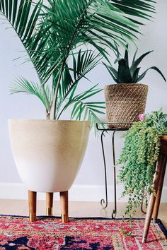 DIY Modern Planters