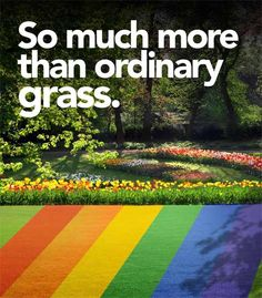 colored_artificial_grass_colored_turf.jpg 470×536 pixels
