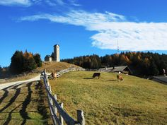 Mia foto scattata al Monte San Vigilio / Vigiljoch - Lana   Stefano Mazzatenta (@ste_rediquadri) | Twitter