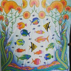 Instagram media lidianapessoa13 - Mais um do Oceano Perdido.. #oceanoperdidotop #coreaart #colorindoavida #colorindolivrostop #livrosdecolorir #jardimsecreto #prazeremcolorir