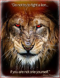 The truth is like a lion; you don't have to defend it. Let it loose… it will defend itself. ~Augustine of Hippo Great Quotes, Quotes To Live By, Me Quotes, Qoutes, Inspirational Quotes, Quotes With Lions, Guts Quotes, Glory Quotes, Best Motivational Quotes
