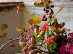 Studio Choo Florists - Home
