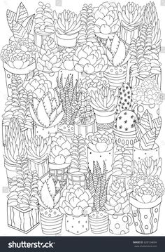 Doodles Elements Black And White Coloring Book Page For Adult A4 Size Succulent Vector Art Design Linear Botanical