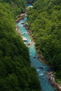 Durmitor National Park - The river Tara Canyon in Bistrica
