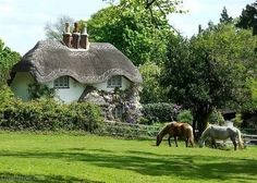 English Cottage with Thatched Roof beautiful peaceful horses england cottage thatched roof