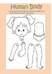 Girl. English teaching worksheets: Human body