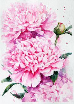 Peonies. Pink series. on Behance