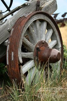 old wagon wheel Country Farm, Country Life, Country Girls, Country Living, Country Style, Rust In Peace, Old Wagons, Photo D Art, Country Scenes