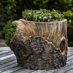 Campania International, Inc Faux Bois Cast Stone Pot Planter Stone Planters, Urn Planters, Planter Boxes, Succulent Planters, Planter Ideas, Garden Art, Garden Design, Pond Plants, Fairies Garden