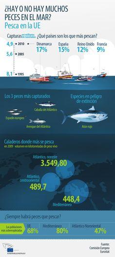 """Rodust: """"La naturaleza y los pescadores se beneficiarán de la reforma pesquera"""""""