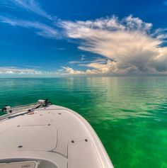 Into the blue, saltwater fishing in Belize