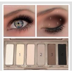 Urban Decay Naked Basics Palette. How To Use