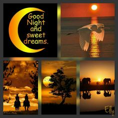 """IN THE MOOD FOR: """"SWEET DREAMS"""""""