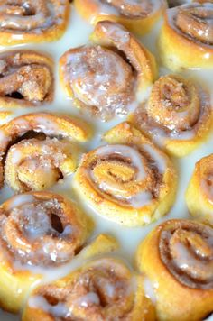 vegan cinnamon rolls - foodaffair.at Vegan Cinnamon Rolls, Doughnut, Favorite Recipes, Desserts, Blog, Tailgate Desserts, Deserts, Postres, Blogging