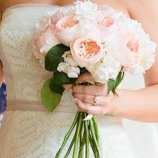 pink-white-roses-david-austin-prague