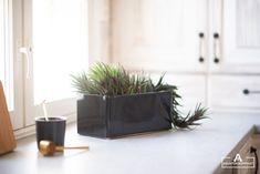 Rustic Kitchen, Plants, Primitive Kitchen, Flora, Plant, Planting, Kitchen Rustic