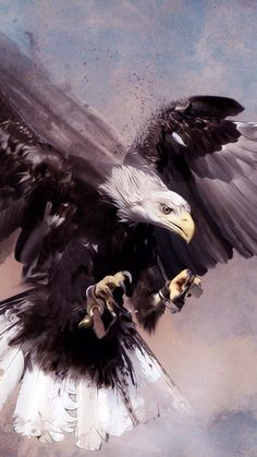Best Cute Animals Photos You Never Seen Before – Page 2 – icanpinview Eagle Images, Eagle Pictures, Nicolas Vanier, Eagle Wallpaper, Camo Wallpaper, Meaningful Tattoos For Family, Eagle Art, Black Eagle, Wild Forest