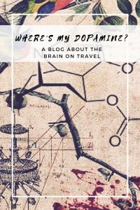 What is the brain basis of the wild and wonderful experiences of travel?