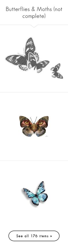 """""""Butterflies & Moths (not complete)"""" by sica1616 ❤ liked on Polyvore featuring accessories, butterflies, animals, backgrounds, christmas, effect, filler, tubes, art and effects"""