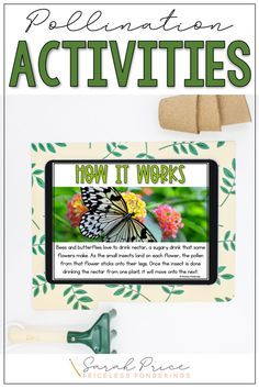 Your second graders will learn and have fun at the same time! If low-prep pollination lesson plans are your thing, then click the picture to learn more. Social Studies Curriculum, Science Curriculum, Science Resources, Interactive Activities, Hands On Activities, Science Activities, Writing Activities, Fun Writing Prompts, Cool Writing