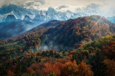 nice Beautiful Colors of Autumn Landscapes  #Autumn #Colors #Fall #Landscape #Pool #Travel #World Winter is coming and the cold weather is on the way but before there is Autumn with its amazing colors! Here is a little selection of pictures from al...
