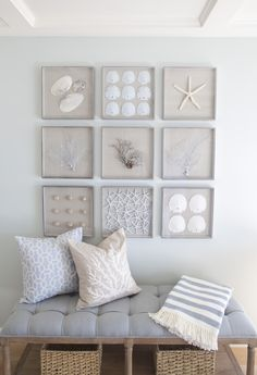 wall decorations for living room grey couch curtains 85 best decor images art decals beachy vignette featuring sanddollars seashells and sea fans the identical frame designs size makes an orderly grouping of organic items