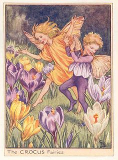 Crocus fairies - from the Flower Fairies series by Cicely Mary Barker, one of my favorite artists.