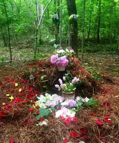 Green Burial Eco-Friendly Funeral, Millennial Trends
