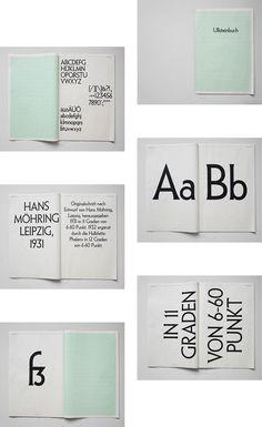 Type Specimen | color block, choice of information
