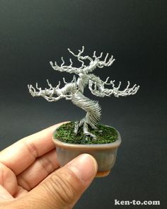 Winter wire bonsai tree by Ken To by KenToArt on deviantART