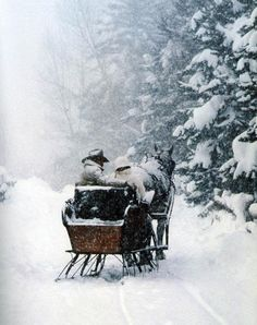 Go for a sleigh ride in the snow pulled by horses.