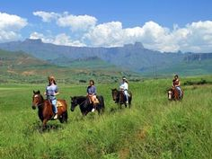 www.HorseRidingForSuccess.com Horseback safaris are virtually exclusive to Africa. You can do a short ride on a game farm, or a great day ride in the Greater Addo Elephant National Park. There are fabulous multi-day horseback safaris in the Waterberg and the Tuli Block of Botswana, in the Mavuradona Wilderness of Zimbabwe, & near Livingstone in Zambia. A fabulous trail in the high lying Nyika Plateau of Malawi does offer sightings of game but it is primarily about scenery.