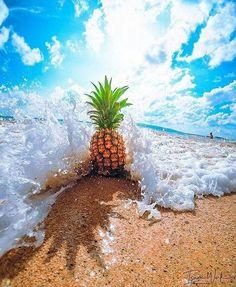 Gorgeous Ideas To Create A Photo Albumn Ocean Wallpaper, Summer Wallpaper, Wallpaper Backgrounds, Iphone Wallpaper Pineapple, Summer Photography, Nature Photography, Photography Filters, Photography Books, Photography Backgrounds