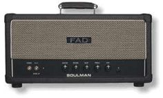 The SOULMAN head by the Belgium boutique amp makers - Freeqi Audio Design.  This one can be called the ultimate medium power blackface amp