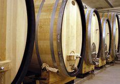 Vin i Österrike: Vinkultur, Vinodlingar & Vinprovning
