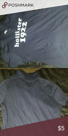 collared Hollister polo shirt never worn. recieved as a gift, and just not my style Hollister Tops